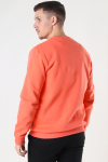 Only & Sons Onsceres Life Crew Neck Camelia