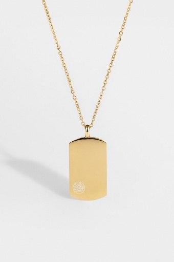 Vegvisir Tag Halsband Guld